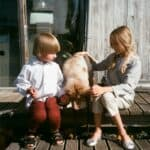 The most suitable dog breeds for children