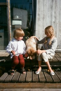 The-most-suitable-dog-breeds-for-children