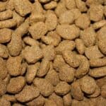4 reasons to avoid dry dog food