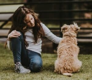6-things-to-know-before-petting-a-dog