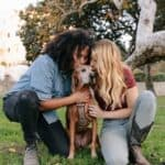 Adopting a dog: what should you ask yourself?