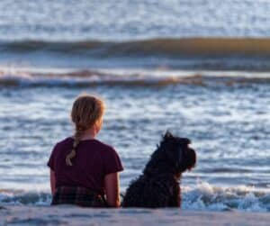Dogs-experience-emotions-similar-to-those-of-children