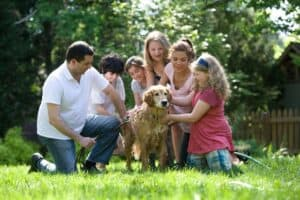 Guide-to-living-with-a-pet-responsibly