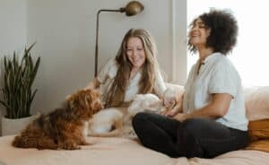How-To-read-and-understand-your-Dogs-Body-Language