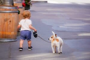 The-benefits-of-walking-the-dog