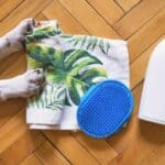 Tips for maintaining your dog's hygiene at home