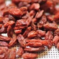 Can-Dogs-Eat-Goji-Berries
