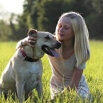 The Top Most loving dog breeds-1