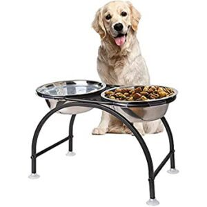 The-benefits-of-the-raised-bowl-for-dogs